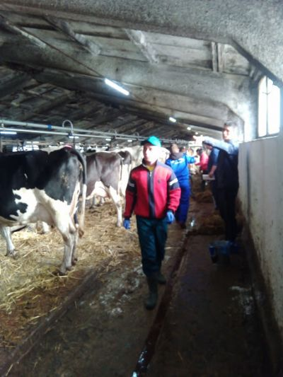 """Десето юбилейно национално състезание """"Млад фермер"""" 2019 година - Изображение 3"""